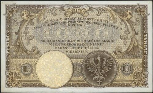 1.000 złotych 28.02.1919, Miłczak 55a, Lucow 599 (R5), ...