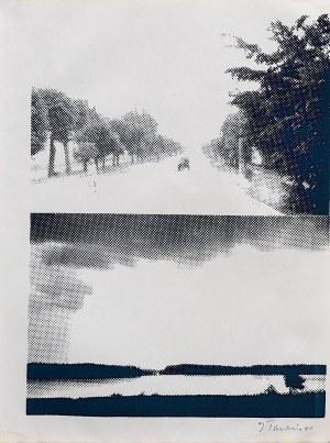 Jan Tarasin, Pejzaż, 1990