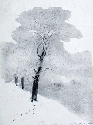 Leon Wyczółkowski (1852 Huta Miastkowska k. Garwolina - 1936 Warszawa), Oszronione drzewo, 1924 r.