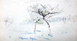 Wlastimil Hofman (1881 Praga - 1970 Szklarska Poręba), Kwitnące drzewa