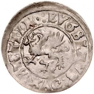 Pomorze, Bogusław X 1478-1523, Wit 1516, Szczecin.