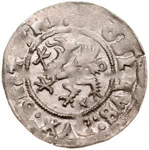 Pomorze, Bogusław X 1478-1523, Wit 1521, Szczecin.