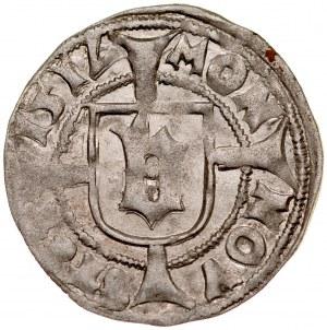 Pomorze, Bogusław X 1478-1523, Wit 151V, Szczecin.