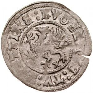 Pomorze, Bogusław X 1478-1523, Wit 1512, Szczecin.