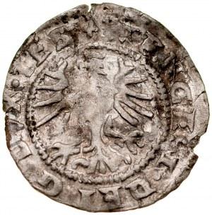 Śląsk, Księstwo Cieszyńskie, Wacław III Adam 1528-1579, Połgrosz 1570, Cieszyn. RRR.