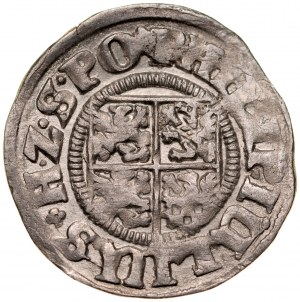 Pomorze, Filip Juliusz 1592-1625, Grosz 1609, Nowopole.