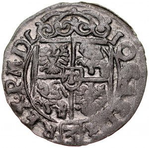 Jan II Kazimierz 1649-1668, Półtorak 1662, Poznań.