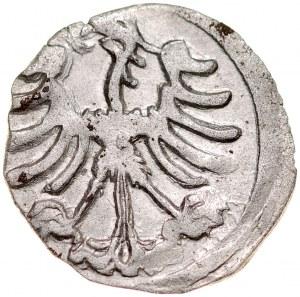 Aleksander Jagiellończyk, Denar, Av.: Pogoń, gotycka litera A.