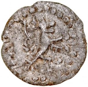 Wacław II 1300-1305, Denar, Sandomierz?, Av.: Orzeł piastowski, Rvc.: Lew czeski. RRR.
