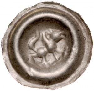 Pomorze Wschodnie, Sambor II 1217-1278, Brakteat guziczkowy, Pomorze Gdańskie, Av.: Kroczący Gryf na lewo trzyma sznur jantaru, RR.