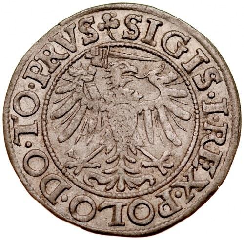 Zygmunt I Stary 1506-1548, Grosz 1539, Elbląg.