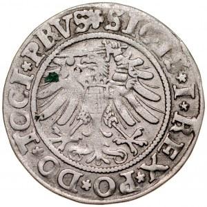 Zygmunt I Stary 1506-1548, Grosz 1533, Elbląg.