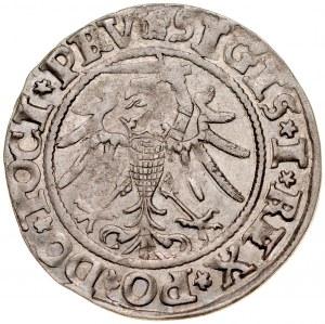 Zygmunt I Stary 1506-1548, Grosz 1535, Elbląg.