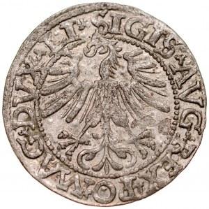 Zygmunt II August 1545-1572, Półgrosz 1562, Wilno.