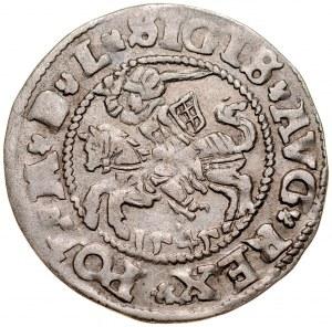 Zygmunt II August 1545-1572, Półgrosz 1545, Wilno. RRR.