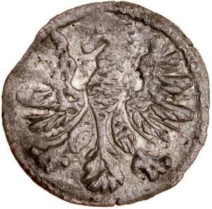 Zygmunt II August 1545-1572, Denar 1546, Wilno, RRR.