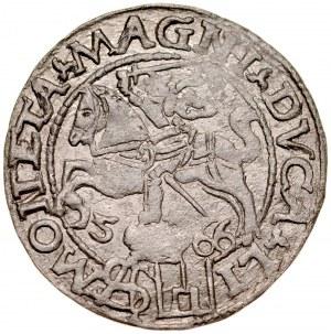 Zygmunt II August 1545-1572, Grosz na stopę polską 1566, Wilno.