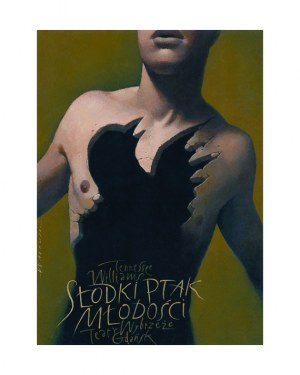 Plakat teatralny do spektaklu Słodki Ptak Młodości autor.Wiesław Wałkuski, teatr Wybrzeże, 70x100cm