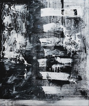 Anita Owsianna, Impulse, 2016