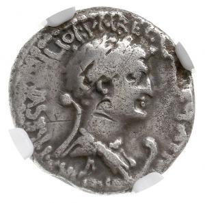 denar 34 pne, Aleksandria, Aw: Głowa Marka Antoniusza w...