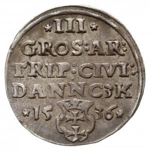 trojak 1536, Gdańsk, odmiana z węższą głową króla, końc...