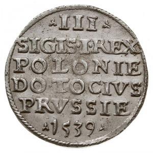 trojak 1539, Elbląg, odmiana z napisem ELBING, Iger E.3...
