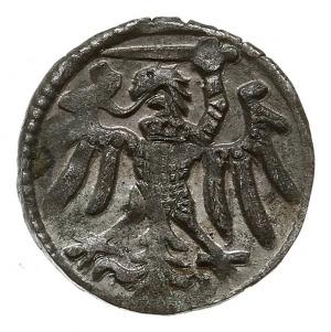 denar, bez daty, Elbląg, odmiana z kreską rozdzielającą...