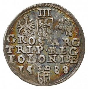 trojak 1588, Olkusz, trójlistki przy Orle i Pogoni, Ige...