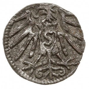 denar, bez daty, Królewiec,  Bahrf. 1112, Neumann 49, b...