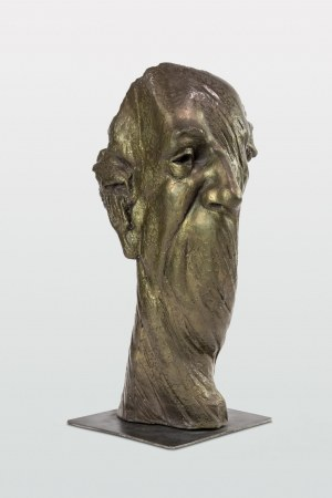 Dariusz Sitek (ur. 1966 Sandomierz), Portret