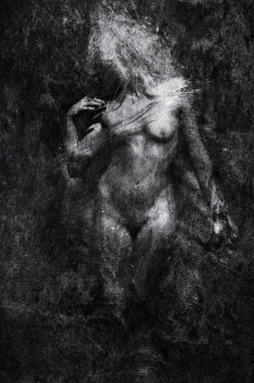 Cezary Dubiel, Venus 4, 2010