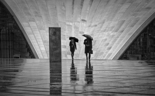 Cezary Dubiel, Deszczowy dzień w Paryżu, 2014
