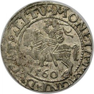 Polska, Zygmunt II August 1545-1572, półgrosz 1560, Wilno