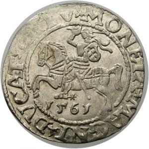 Polska, Zygmunt II August 1545-1572, półgrosz 1561, Wilno