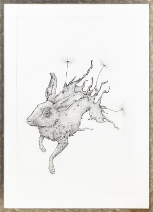 Katarzyna Roman, Hare Dandelion, 2016