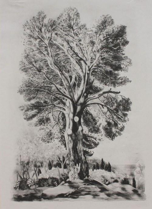 Mojżesz Kisling wg (1891-1953), Ilustracje do: Jean Giono, Provence (Paris, 1954)
