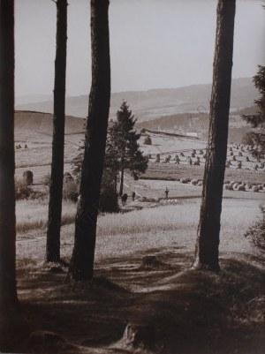 Zofia Rydet (1911-1997), Droga na Turbacz