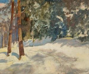 Ludwik Grabowski (1884-1982), Pejzaż zimowy