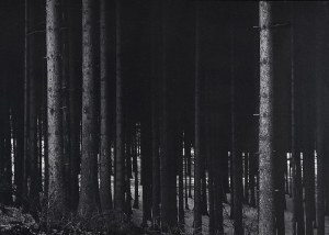 SOBECKI TOMASZ, Perspektywa - 4, 1987
