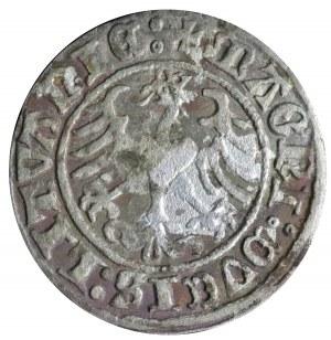 półgrosz 1510