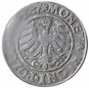 Grosz , Kraków 1527