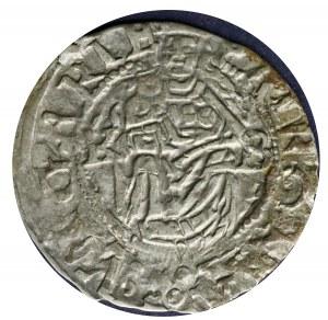 Denar 1576