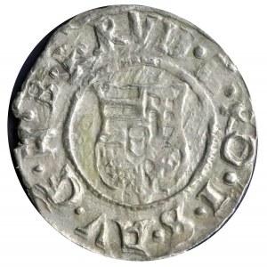 Denar 1594