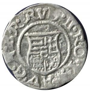Denar 1598