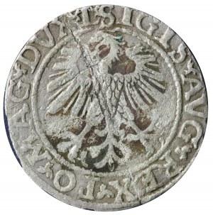 półgrosz 1560