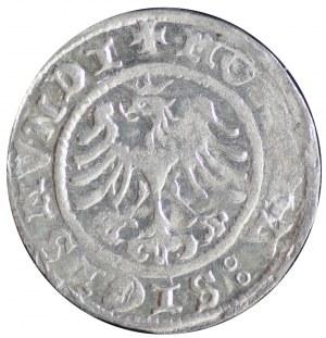 półgrosz koronny 1507, Kraków