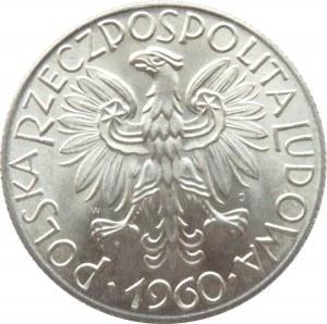 Polska, PRL, Rybak, 5 złotych 1960, wspaniały egzemplarz, UNC