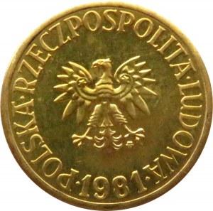 Polska, PRL, 5 złotych 1981, IDEALNE, UNC