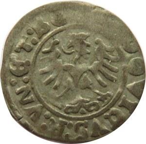 Świdnica, Ludwik Jagiellończyk, półgrosz 1524, Świdnica, ładny
