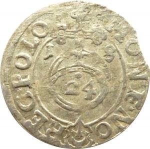 Zygmunt III Waza, półtorak 1618, Sas w tarczy, Bydgoszcz